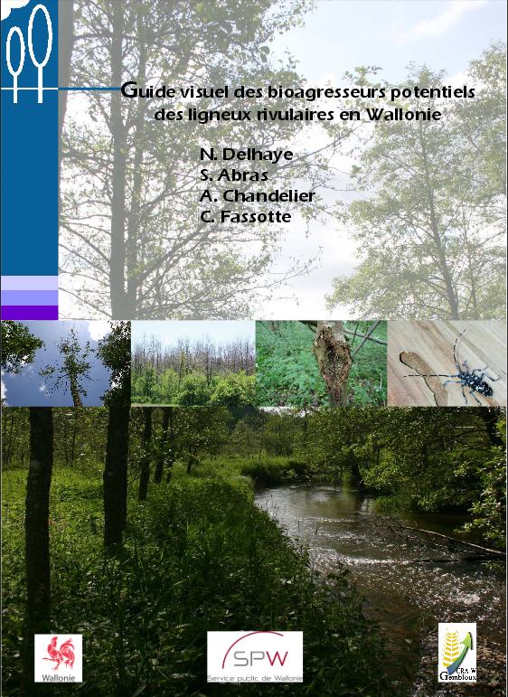 Guide visuel des bioagresseurs potentiels des ligneux rivulaires en Wallonie