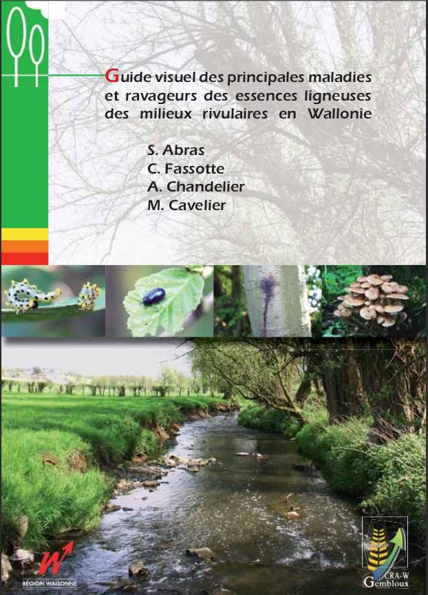 Guide visuel des principales maladies et ravageurs des essences ligneuses des milieux rivulaires en Wallonie