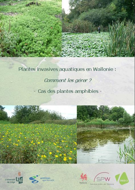 Plantes invasives aquatiques en Wallonie : Comment les gérer ?